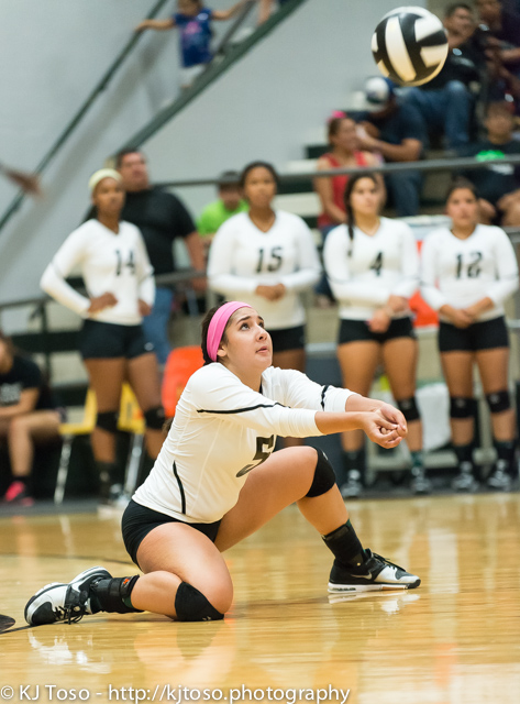 Southwest's Aashlyn Sulaica demonstrates the proper form while making one of her 13 digs.